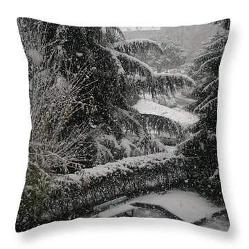 Throw Pillow featuring the photograph Huge Snowflakes by Giuseppe Epifani