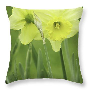 Throw Pillow featuring the photograph Hugging Daffodils by Ram Vasudev