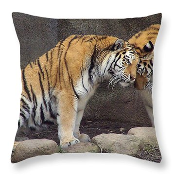 Hugs And Kisses Throw Pillow by Frozen in Time Fine Art Photography