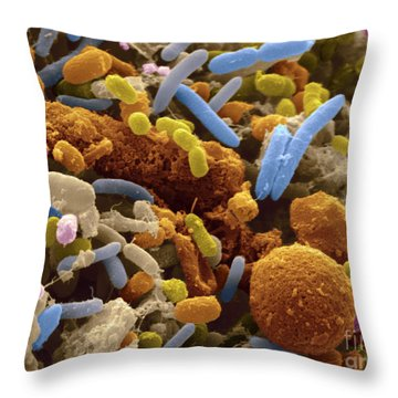 Human Feces Containing Bacteria Throw Pillow by Scimat