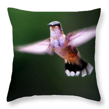 Hummer Ballet 3 Throw Pillow