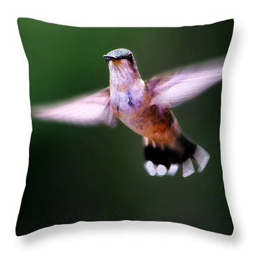 Hummer Ballet 3 Throw Pillow