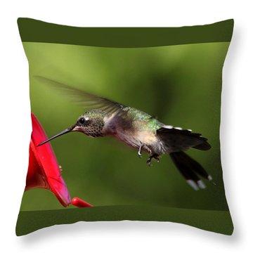 Look Hummingbird Eyelashes Throw Pillow