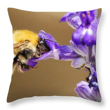 Throw Pillow featuring the photograph Humming Bee  by Stwayne Keubrick