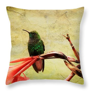 Hummingbird 1 Throw Pillow by Teresa Zieba