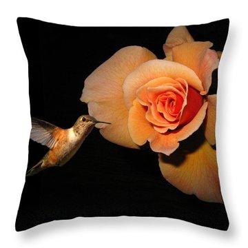 Hummingbird And Orange Rose Throw Pillow by Joyce Dickens