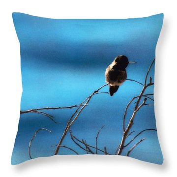 Hummingbird At Waters Edge Throw Pillow by Timothy Bulone