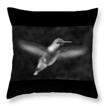 Hummingbird Throw Pillow by Ben and Raisa Gertsberg