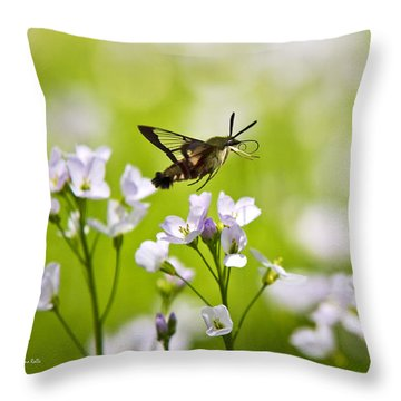 Hummingbird Clearwing Moth Flying Away Throw Pillow by Christina Rollo