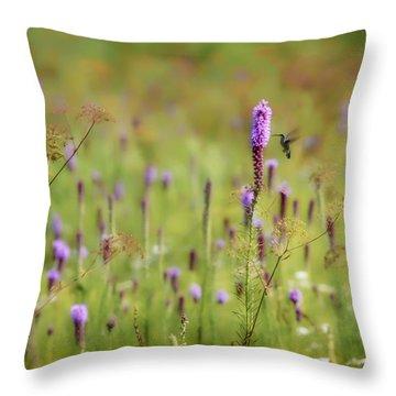 Hummingbird Dream Throw Pillow by James Barber