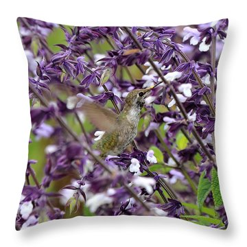Hummingbird Flowers Throw Pillow