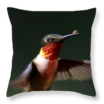 Hummingbird - Hitching A Ride - Ruby-throated Hummingbird Throw Pillow by Travis Truelove