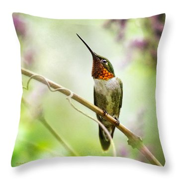 Hummingbird Looking For Love Square Throw Pillow