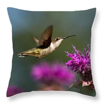 Hummingbird Moving Along Throw Pillow by Christina Rollo