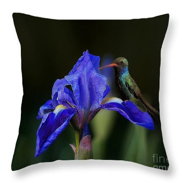 Hummingbird On A Mexican Blue Exotic Flower Throw Pillow