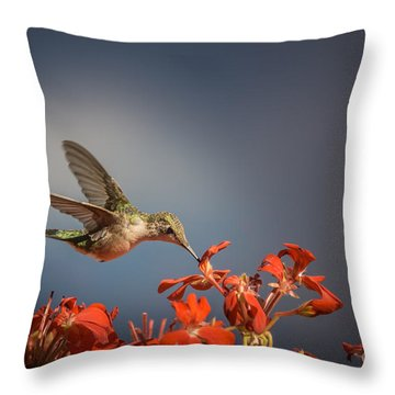Hummingbird Or My Summer Visitor Throw Pillow by Jola Martysz