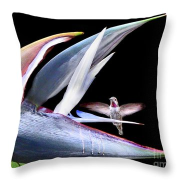 Throw Pillow featuring the photograph Hummingbird Paradise by Jennie Breeze