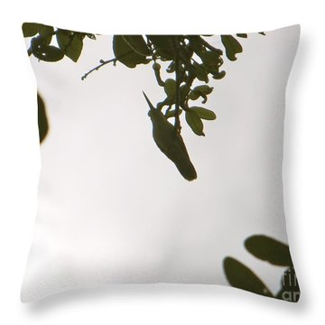 Throw Pillow featuring the photograph Hummingbird Silhouette 1 by Joy Hardee