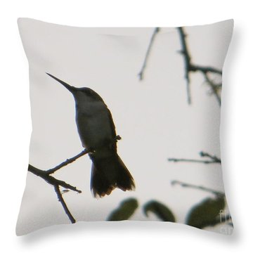 Throw Pillow featuring the photograph Hummingbird Silhouette 2 by Joy Hardee