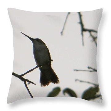 Hummingbird Silhouette 2 Throw Pillow by Joy Hardee