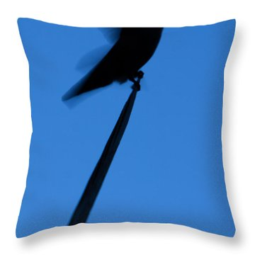 Hummingbird Silhouette Throw Pillow