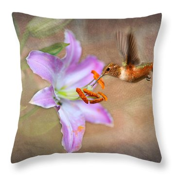 Hummingbird Sweets Throw Pillow