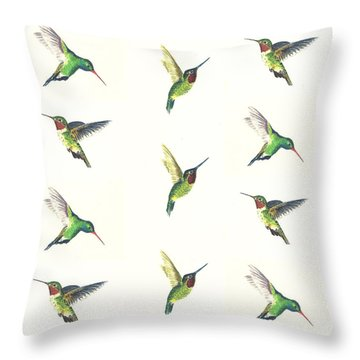 Hummingbirds Number 2 Throw Pillow