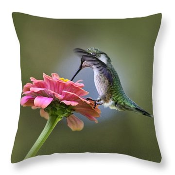 Hummingbirds Pure Goodness Throw Pillow by Christina Rollo