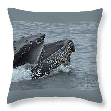Throw Pillow featuring the photograph Humpback Whale  Lunge Feeding 2013 In Monterey Bay by California Views Mr Pat Hathaway Archives