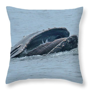 Throw Pillow featuring the photograph Humpback Whale  Lunge Feeding Monterey Bay 2013 by California Views Mr Pat Hathaway Archives