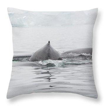 Dorsal Fin Throw Pillows