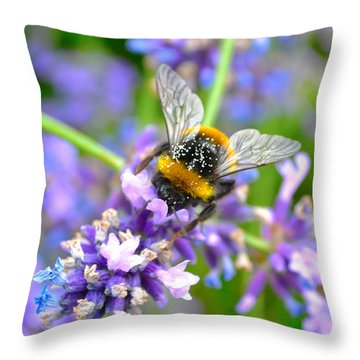 Hungry Bee Throw Pillow