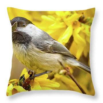 Hungry Bird Throw Pillow by Bill Wakeley