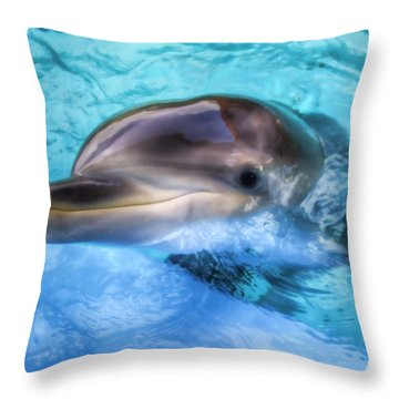Throw Pillow featuring the photograph Hungry Dolphin by Tim Stanley