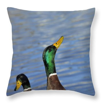 Hungry Duck Throw Pillow