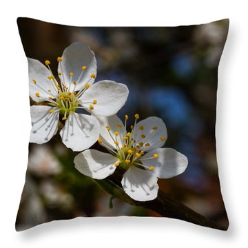 Hungry For Sun Throw Pillow