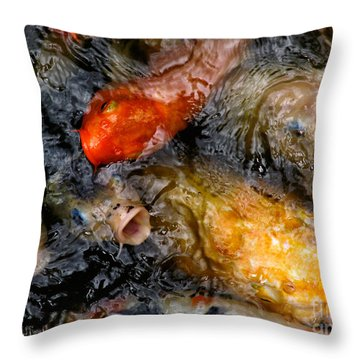 Hungry Koi Fish Throw Pillow