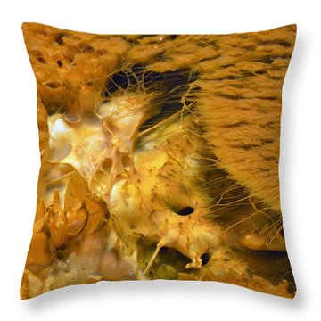 Hungry Looking Bacterial Mat Yellowstone Throw Pillow by Bruce Gourley