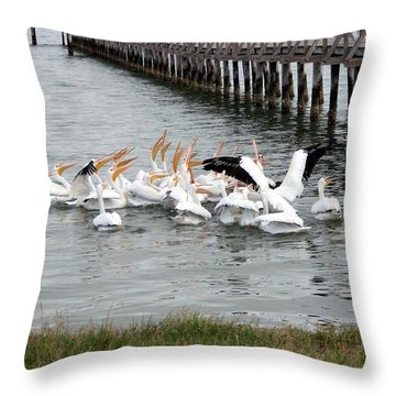 Throw Pillow featuring the photograph Hungry Pelicans by Linda Cox