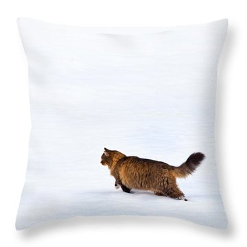Hunter At Work Throw Pillow by Theresa Tahara