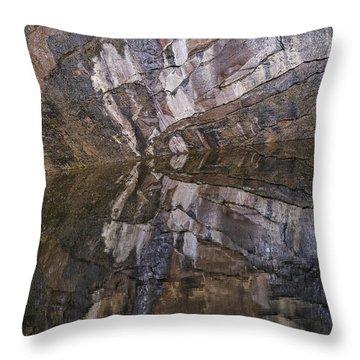 Hunter Canyon Seep Throw Pillow