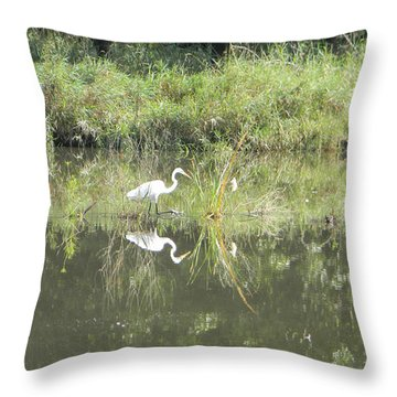 Hunter Reflected 1 Throw Pillow