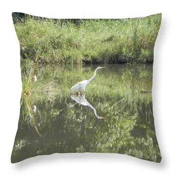 Hunter Reflected 2 Throw Pillow