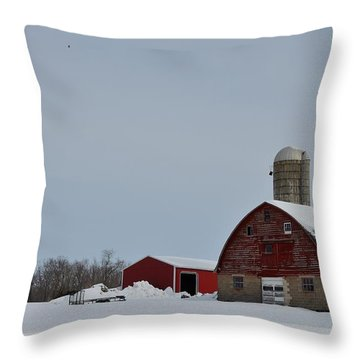 Throw Pillow featuring the photograph Hunterdon County Landscape by Steven Richman
