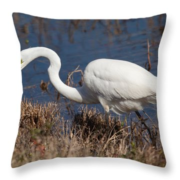 Hunting For Lunch Throw Pillow