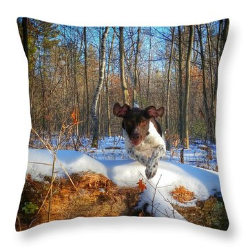 Hurdle Throw Pillow