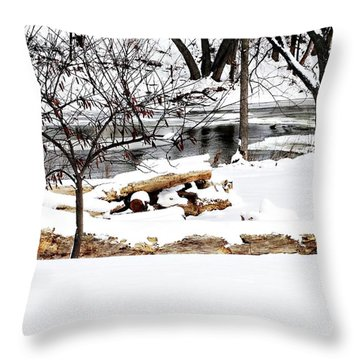 Huron River Throw Pillow