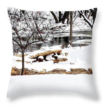 Huron River Throw Pillow