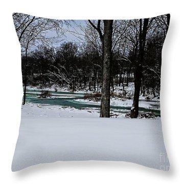 Huron River In Monroeville Throw Pillow