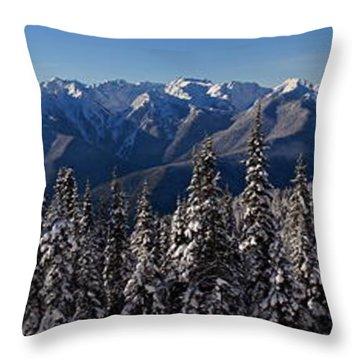 Hurricane Ridge Panorama Throw Pillow